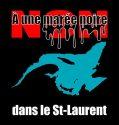 Non à une marée noire dans le Saint-Laurent